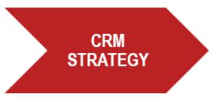 CRM Success Program - Strategy step
