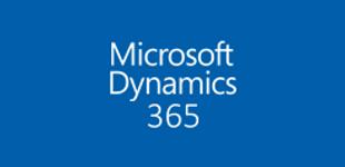Dynamics 365 Team License